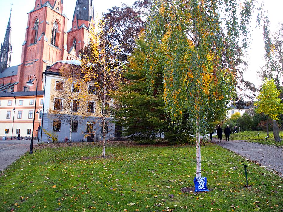 Uppsala - zwischen Domkirche und Universität