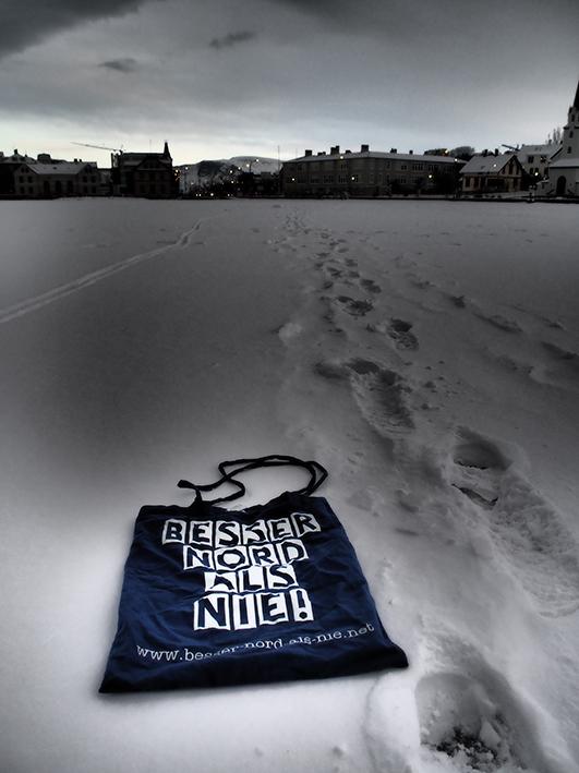 zugefrorener Tjörnin, Reykjavik