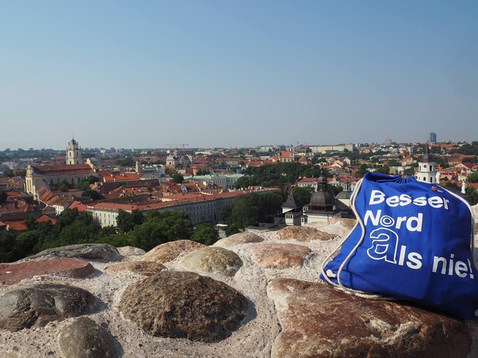 Burg auf dem Gediminas-Berg in Vilnius