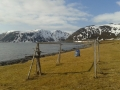 Ein Apriltag in Gulgammen auf der Insel Magerøya