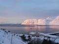 20.02. - Sonnenschein und Boote im Hafen