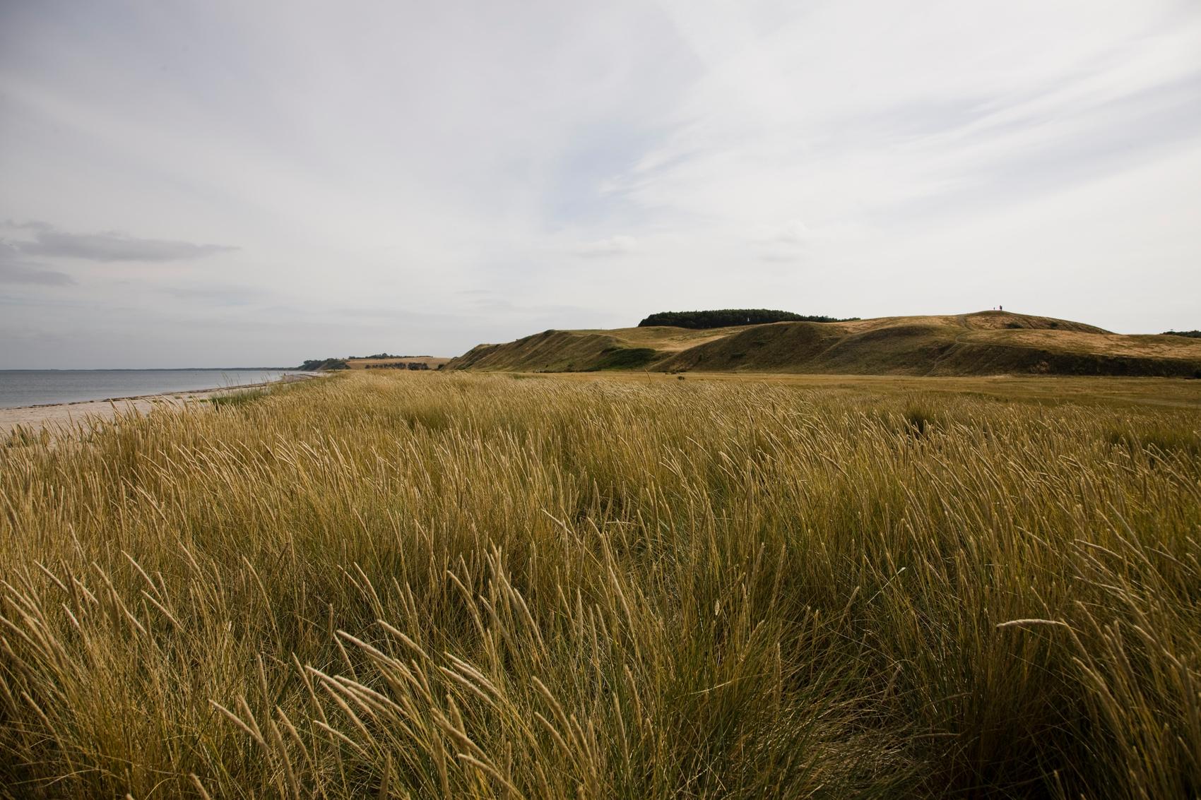 Naturlandskab påSamsø Foto: Jesper Plambech/VisitDenmark