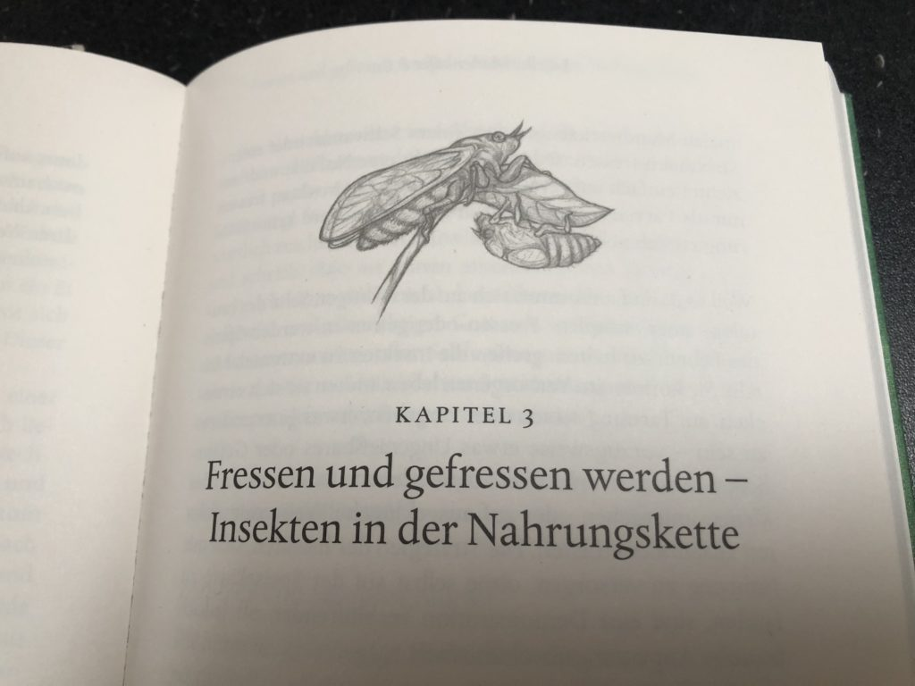 Libelle, Marienkäfer & Co. Anne Sverdrup-Thygeson