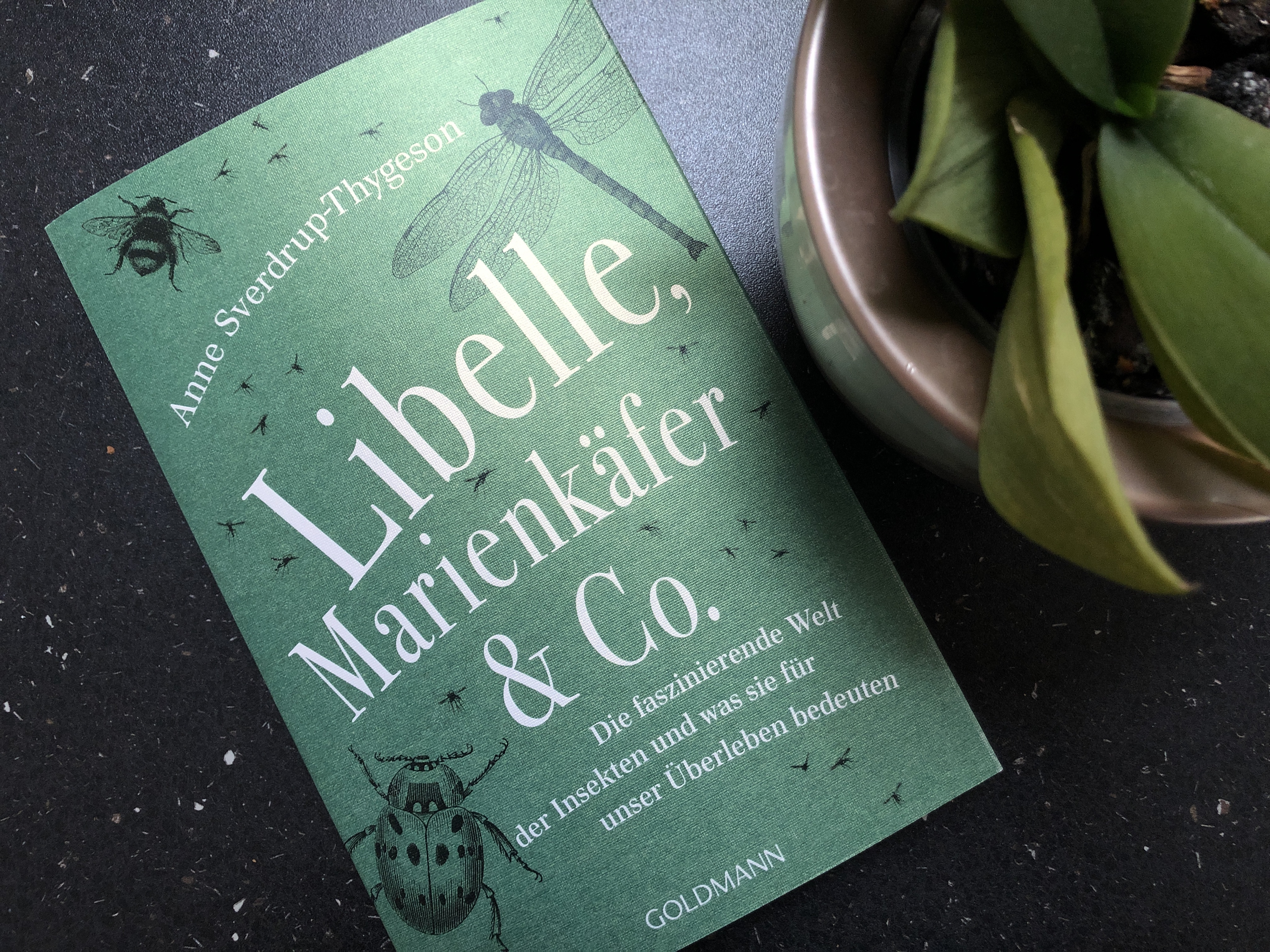 "Anne Sverdrup-Thygeson: ""Libelle, Marienkäfer & Co."""
